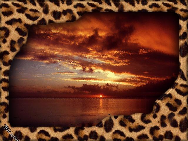 اجمل واروع الصور الطبيعيه داخل اطارات جميله ورائعه