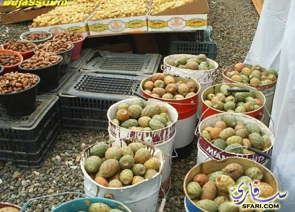 صور برشوم - صور متنوعة