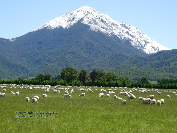 نيوزيلاند - صور طبيعة