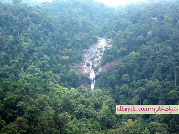 ماليزيا سحر الطبيعة - صور غريبة