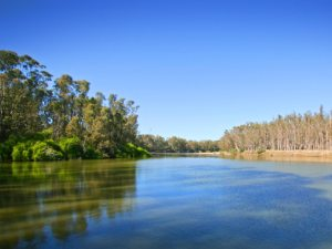 نهر موراي