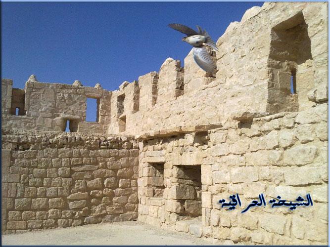 قلعة القطرانة بالاردن .. جزء من رحلتي .. تصويري