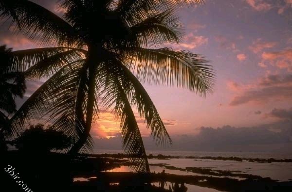 من اجمل صور شروق وغروب الشمس باماكن مختلفة مكتبة كبيره من الصور الجزء الأخير