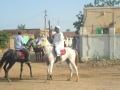 التراث السوداني